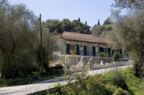 gallery/apartments olive groves